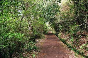 chemin madère portugal
