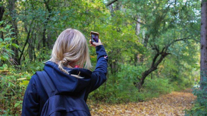 Top 5 des applications mobile pour la randonnée
