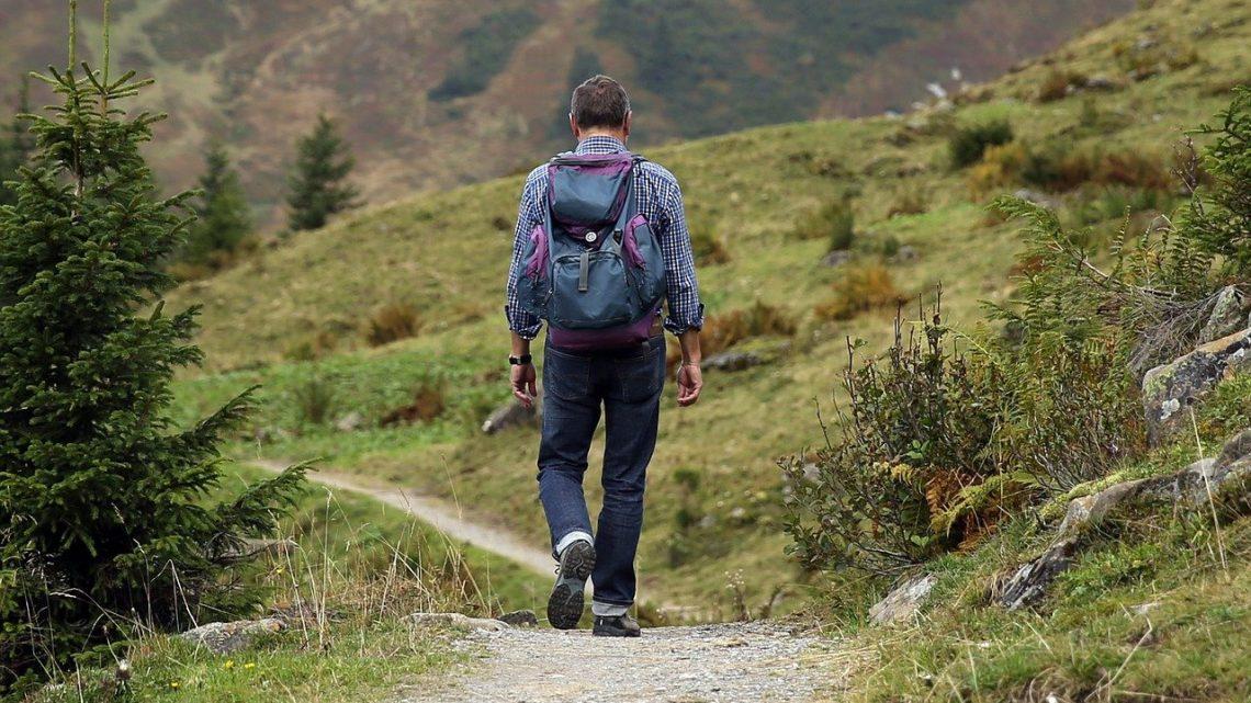 Quelle nourriture emporter pour une randonnée?