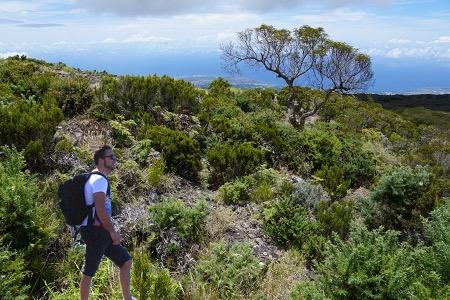 Les 5 plus belles randonnées à faire à La Réunion