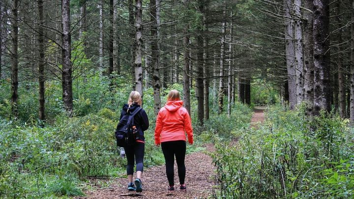 Préparation physique: quel entraînement pour partir en trek?
