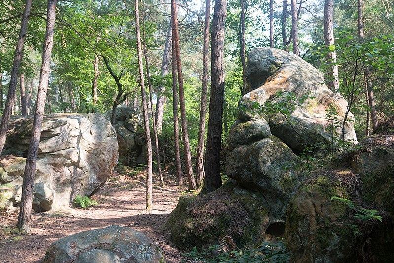 Randonnée des 25 bosses en forêt de Fontainebleau