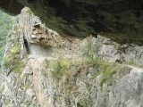 Randonnées des gorges de la Carança dans les Pyrénées