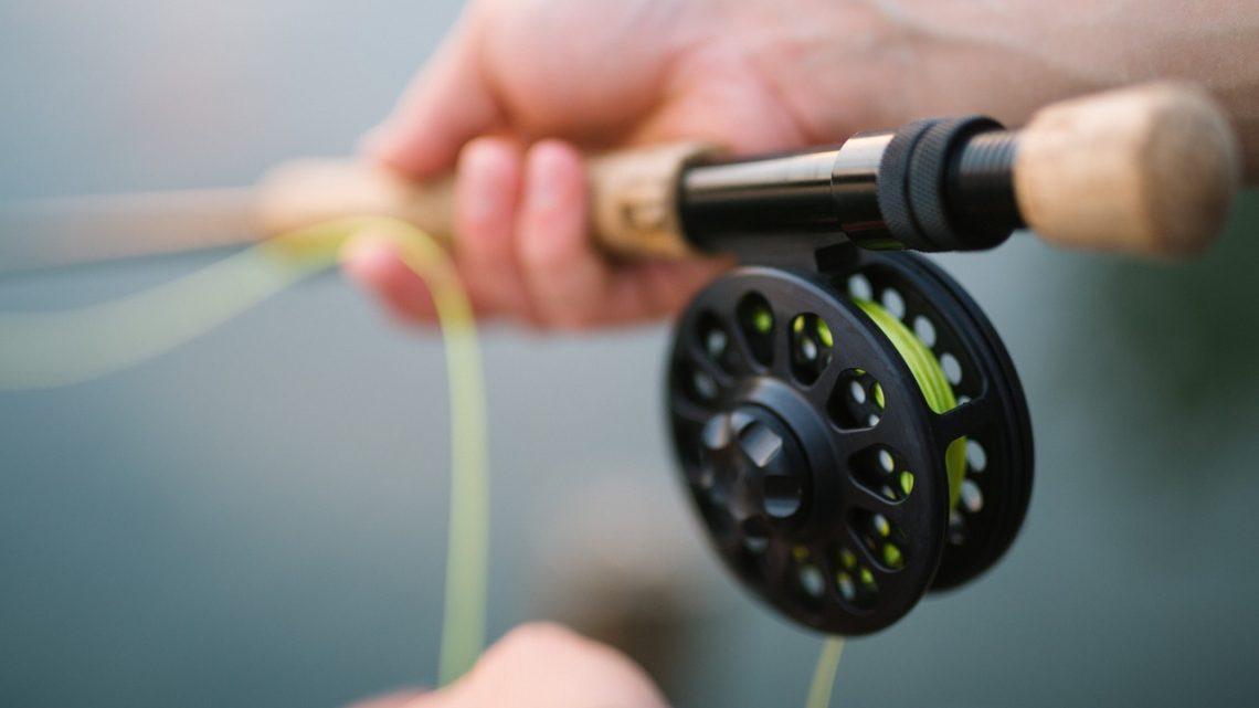 Les bases essentielles pour réussir ses premières sessions de pêche à la carpe