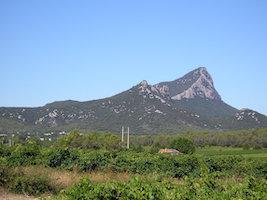 Top 5 des plus belles randonnées autour de Montpellier