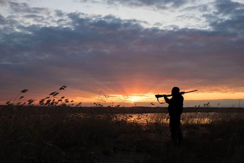 La chasse : les 3 conseils pour réussir cette activité?
