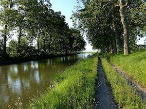 Top 5 des plus belles randonnées autour de Toulouse